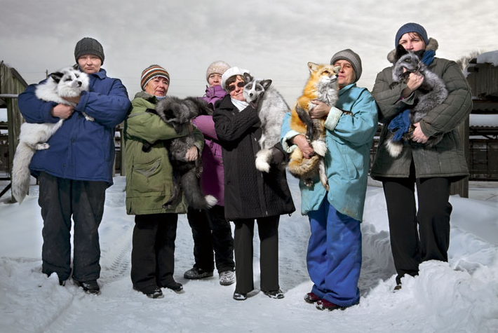 Improbable Pets Foxes bred through generations to be as human-friendly as dogs get a boost from Lyudmila Trut (center) and other staff at the Institute of Cytology and Genetics, in Novosibirsk, Siberia. Photograph by Vincent J. Musi