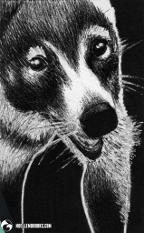 leucism ink inks ballpoint pen draw drawing drawings image images picture pictures art arts artsy artwork artworks artist artistic project projects series create creates creative black and white achromatic monochromatic monochrome animal animals kingdom animalia wildlife nature art artist trading card cards white-out white out whiteout witeout wite-out wite portrait portraits portraiture profile profiles realism realistic detail details detailed dark high contrast shadows shadow shadowed art